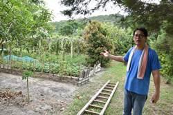 電子新貴劉明芳返鄉務農打造出兒童新樂園