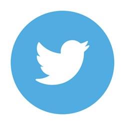 美國大選將至 谷歌、推特反制假訊息