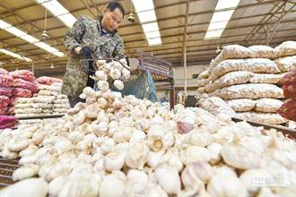 蒜價飆每公斤333元天價 網:私菸都行了「私蒜」有差嗎?