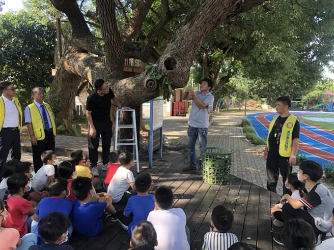 同安國小學童們在大樹下仔細聆聽林敏錡(右二)示範說明如何移植蝴蝶蘭苗。(謝瓊雲攝)