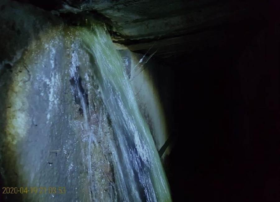 環保局檢測後發現水中含有大量有害健康物質,水質呈現青綠色。(讀者提供/周書聖台南傳真)