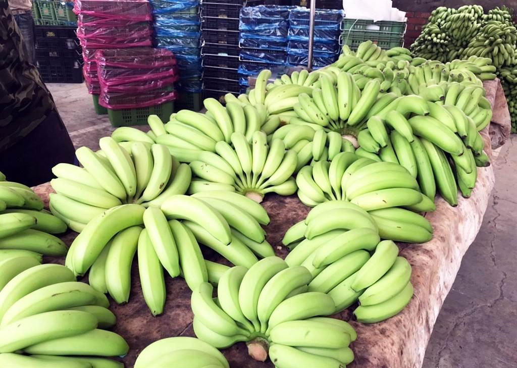 全台香蕉盛產使得產地價格崩跌,菜農林佳新指出背後原因。(資料照/林和生攝)