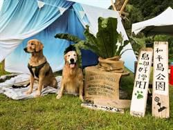 基隆和平島公園 邀民眾帶毛孩來野餐享受初秋美景