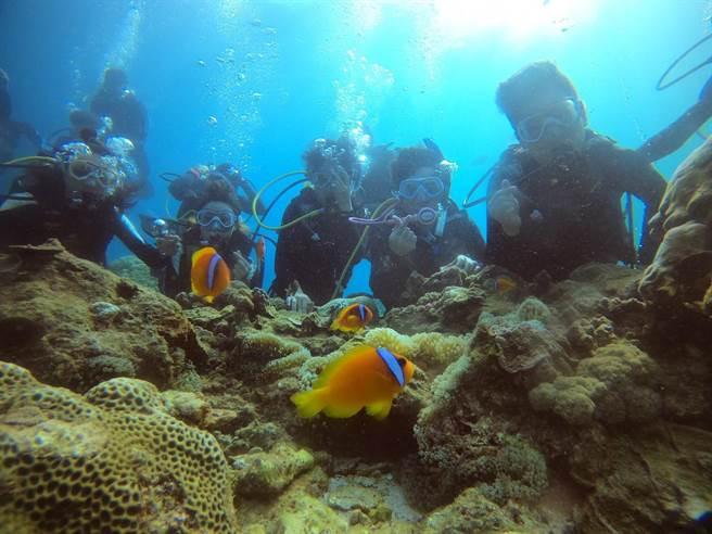 大同大學設計團隊為了設計海底郵筒潛水探路(大同大學提供)