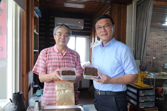 鹿港鎮長許志宏(右)前往蔡焜培(左)的店內道賀,對烘焙過後咖啡豆子香氣讚不絕口。(謝瓊雲攝)