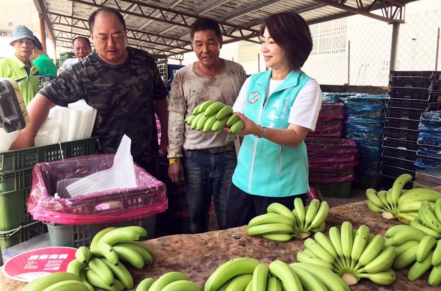 香蕉產地價格崩跌,立委周春米下鄉關心產業,同時鼓勵民眾多吃香蕉。(林和生攝)