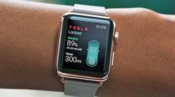 馬斯克否認特斯拉推出智慧錶:那是過時的科技,腦機介面技術才是王道