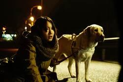 日本懸疑暴力強片《看不見的目擊者》 女星化身盲女對抗連環殺人魔