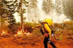 西岸野火 點燃美大選氣候議題
