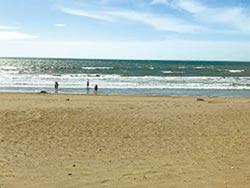海岸侵蝕快 5500萬搶救新月沙灘