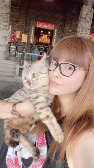 女星愛貓險喪命 獸醫罵「智障主人」要賠6萬