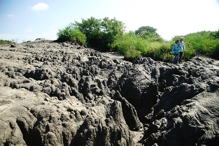 漫步在滾水坪泥火山上,彷彿置身縮小版的侏儸紀公園。(攝影/曾信耀)