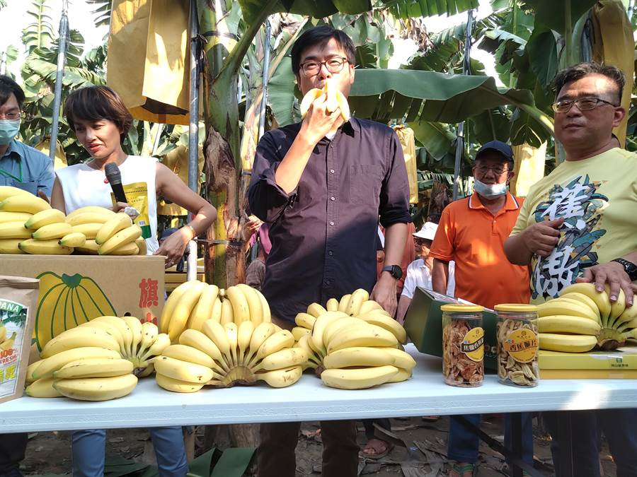 高雄市長陳其邁16日下午至旗山區關心香蕉產業,現場品嘗旗山香蕉,表示已要求各單位協助促銷高雄香蕉,也承諾要為蕉農打開外銷通路。(林雅惠攝)