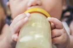 蒼蠅停奶瓶洞口產卵「狂噴白蛆」滴進奶 90秒片瘋傳