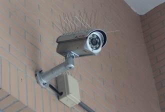 驚見監視器插滿10公分長「刺針」 行家揭真實妙用