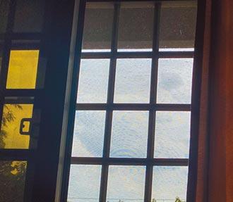嘉縣山區小黑蚊肆虐 議員促學校補紗窗