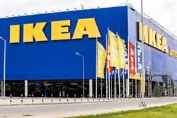 IKEA巧遇肉感正妹 8年後竟找到本尊 結局好意外