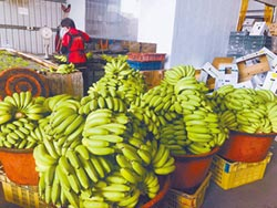香蕉每公斤16.1元 3年同期新低