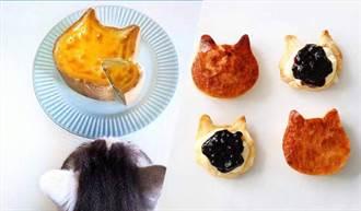 日本「NEKO NEKO CHEESECAK」出新品 「貓咪起司蛋糕 」4種新口味 一樣讓人捨不得吃