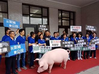 國民黨團:近7成民意反瘦肉精美豬進口 繼續推動公投