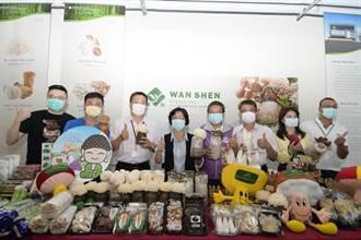 菇菇出頭天 疫情來襲彰化菇類逆勢成長外銷超過800公噸