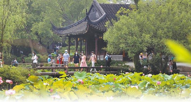 6月底,遊客在蘇州拙政園觀賞盛開的荷花。(新華社資料照片)