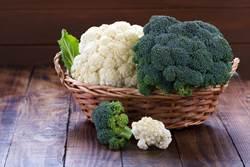 花椰菜、青花菜成份差很大 營養師:3種人不能多吃