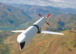 美擬售台空對地飛彈 瞄準陸東南