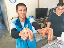 蝦農駁用藥 直播實測差異