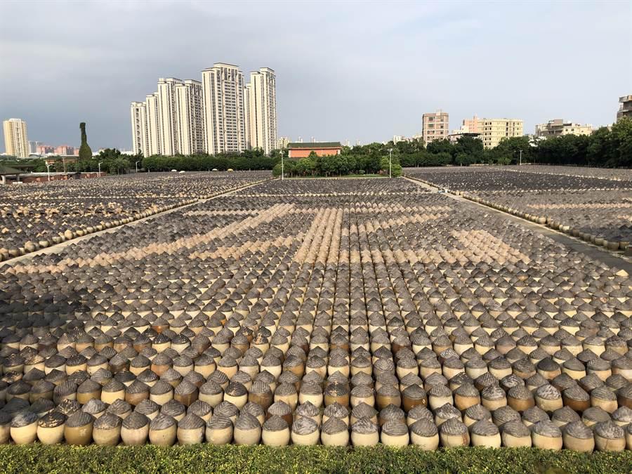 在兼顧防疫並排除萬難,安排與會者參觀擁有亞洲最大的傳統醬油釀造曬場的古龍醬文化園。(王雅芬攝影)
