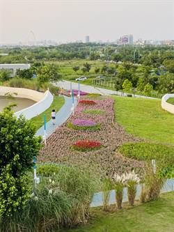 中市中央公園即將開幕 超夢幻歐式花海滿足遊客偽出國體驗