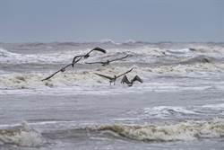 颶風沒完沒了名字不夠用 貝塔明撲向德州