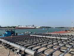 新型蚵農養殖設施 耐用又減少海廢