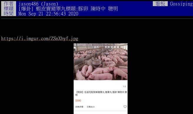 豬睪丸紅了!網購關鍵字竟出現「陳時中」、「聰明」,網友笑翻。