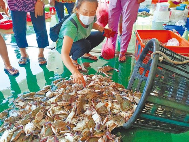 中秋節將屆,又值三點蟹產期,嘉縣東石魚市場已有不少消費者選購三點蟹。(張毓翎攝)
