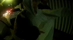 7旬老翁深夜裸體漫步 暖心女警披雨衣送返家