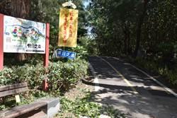 新竹林管處在竹南濱海森林遊憩區清除小花蔓澤蘭