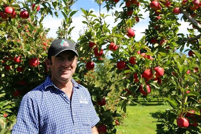 Envy愛妃蘋果果農對他們的蘋果感到特別自豪!(圖/品牌提供)