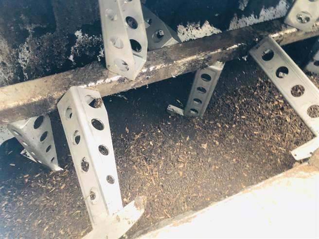 吉慶國小透過導入黑水虻養殖計畫,讓校園內的廚餘回收不再成問題。(吳康瑋攝)