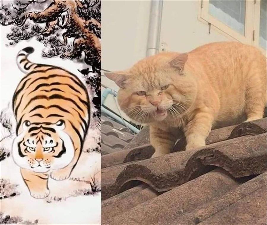 在臉書社群「這時候只要笑就可以了」,分享了一則來自日本網友的萌「貓」下山風景圖,此文PO出立即引起網友的熱烈討論。(Twitter nakamanian翻攝)