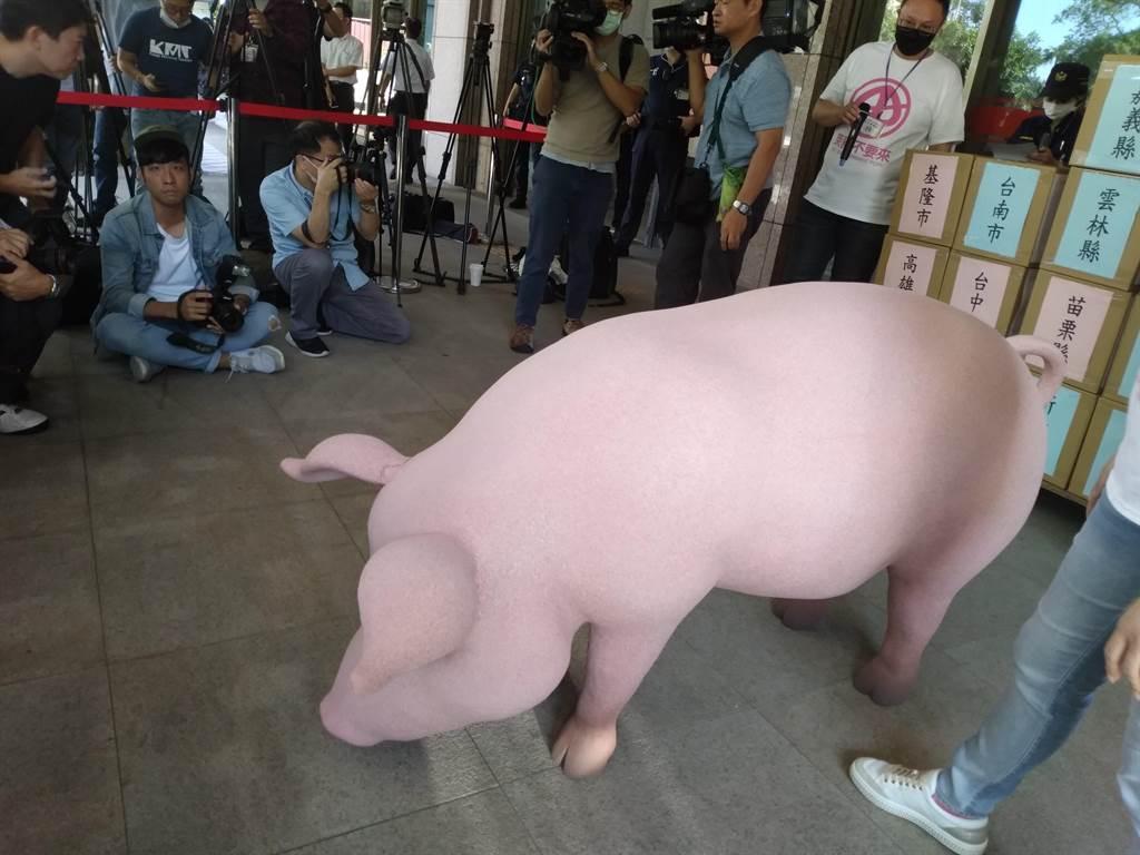 國民黨帶來的道具豬(記者季節攝)