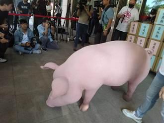 反美豬及公投綁大選連署書 江啟臣親送交至中選會