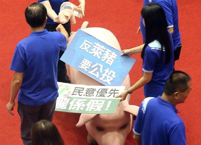 圖為國民黨立委們拿著標語和模型豬要求蘇貞昌道歉和反對美豬牛進口的立場。(資料照,趙雙傑攝)
