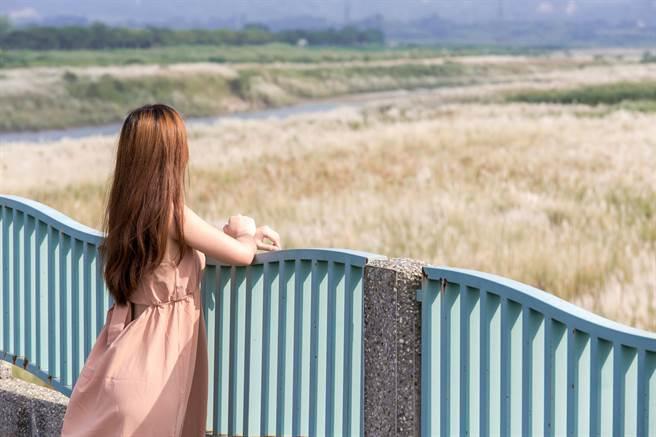 有秋雪之稱的甜根子草,將於10月左右盛開,台南市多處可欣賞美麗白浪。(台南市政府觀旅局提供/李宜杰台南傳真)