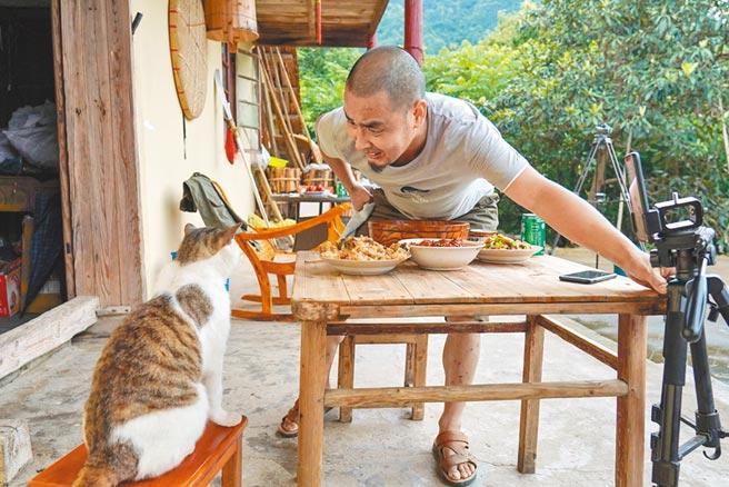 線上寵物經濟崛起,每5.4秒就有一場直播。(新華社資料照片)