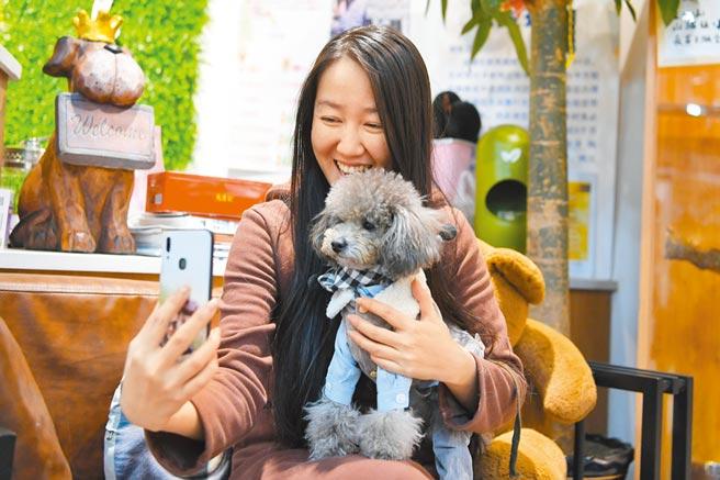 長春一寵物店老闆錄製視頻。(中新社資料照片)