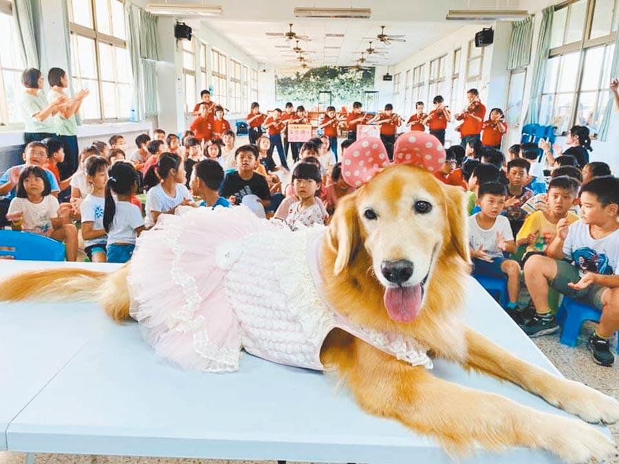 狗醫生「蕗米」因公益與玉光國小小提琴隊譜出愛的循環曲。(謝佳潾攝)