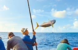 綠島媳婦鰹竿釣 與大海拚搏