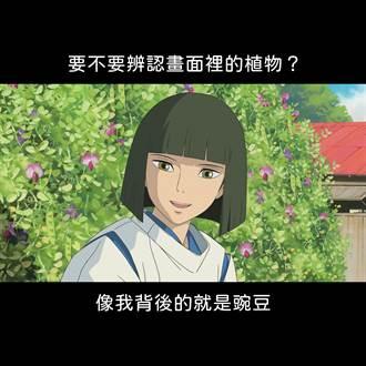 1.5萬人狂讚!台北植物園PO吉卜力迷因圖 網:太扯了
