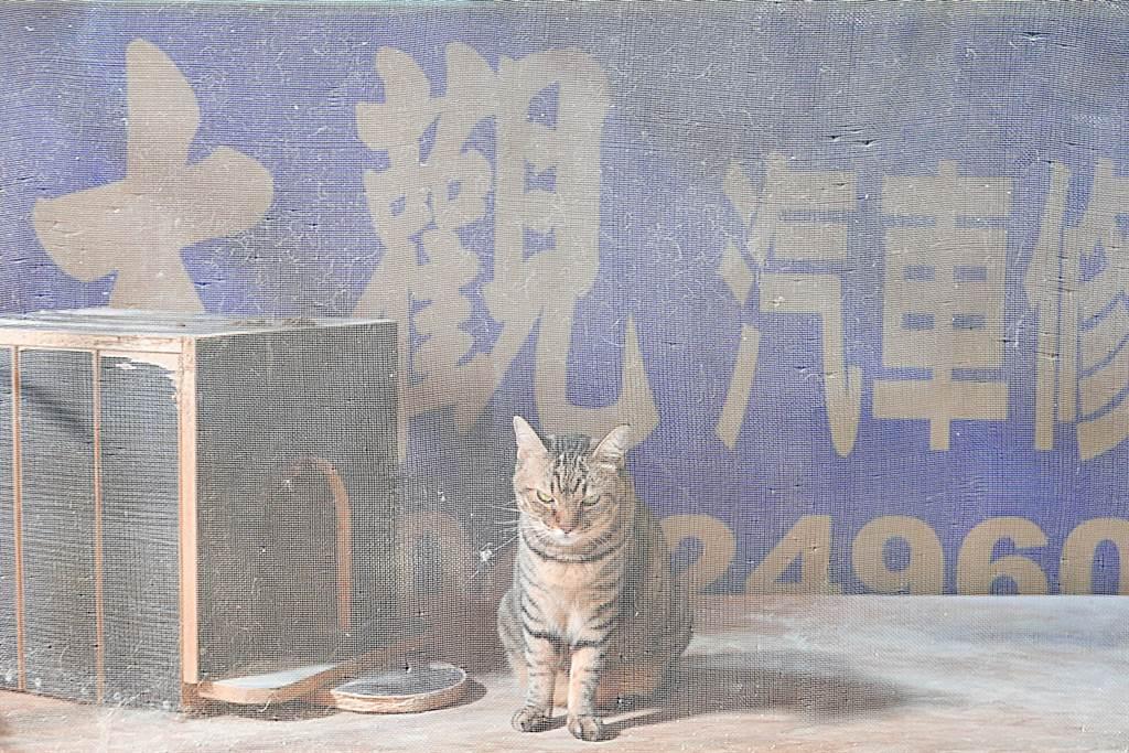 這招牌後來就成了阿聖(小呆)的愛貓牆壁,阿聖之所以會在8年前領養這隻米克斯,是因為作汽車烤漆是很細微、很寂寞的工作,常常一整天下來,面對的就是噴槍、車、所有工具,一個能講話的人都沒有,所以領養一隻貓來陪伴阿聖度過每一天。